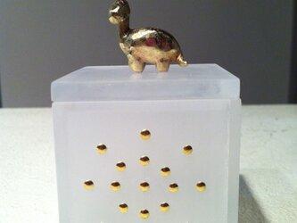 box (恐竜)の画像