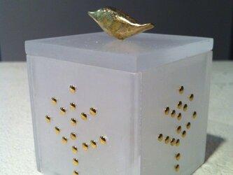 box(トリ)の画像