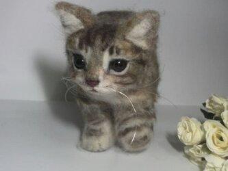 受注制作 羊毛フェルトのキジトラ子猫ちゃんの画像
