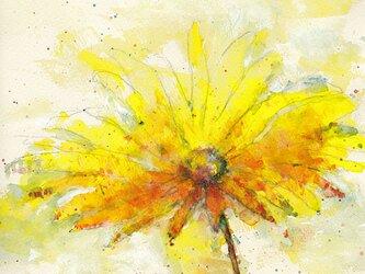 Flower 5 (額縁付き)の画像