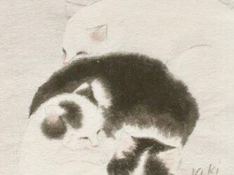 猫の絵の画像