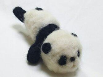 のびのびパンダさんの画像