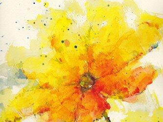 Flower 6 (額縁付き)の画像