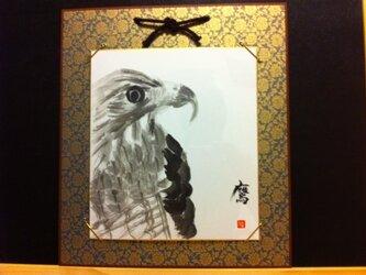 天空を舞う鷹の画像