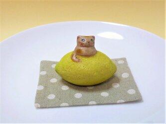 レモン乗りにゃんの画像