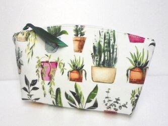 house plants ポーチの画像