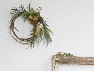 ルボワ(ユーカリ・小麦・木の実)の画像