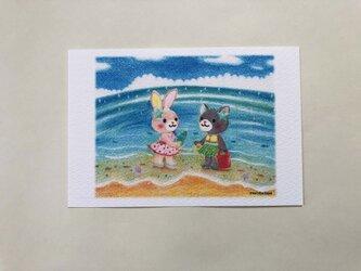 海のともだち ポストカードno.181の画像