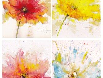 ポストカード・Flowerリーズ 4枚セット 他の組合せも可の画像