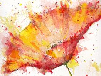 Flower 7 (額縁付き)の画像