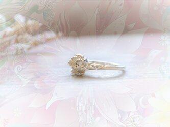 蓮の花の指輪 -花けだリング-の画像