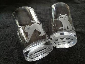 ❬ご依頼品❭  小さなグラス  新芽◈のび猫の画像