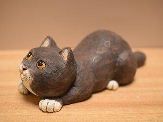 ネコの狙ってるぅーちゃん(売れました)の画像