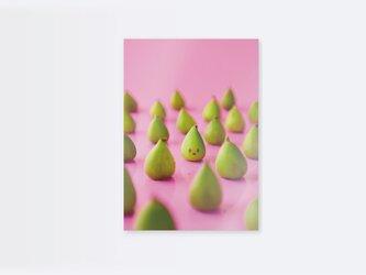 いちじくいちを クリアファイル(写真・イラスト) 2枚セットの画像