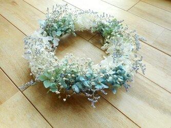 紫陽花とカスミソウの画像
