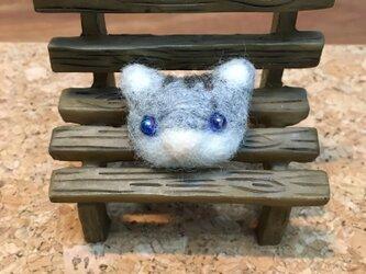 ブルーアイの猫ちゃんバッジの画像