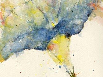 Flower 8 (額縁付き)の画像