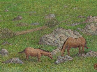 草を食む馬たち~グラサレマにての画像