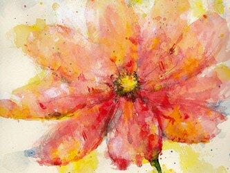 Flower 9 (額縁付き)の画像