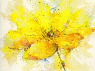 Flower 10 (額縁付き)の画像