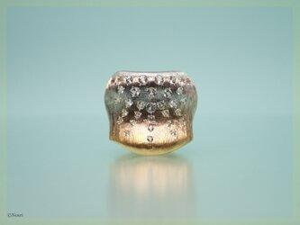 スムース シャイニー リング(Smooth Shiny Gradation Ring)の画像