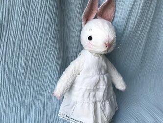 絵本から飛び出してきたようなウサギの女のコの画像