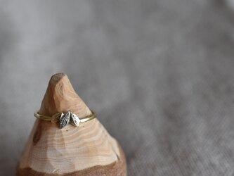 """真鍮とシルバーの指輪 """"森のしずく""""の画像"""