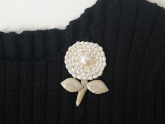ちーっちゃなサークル真珠の画像
