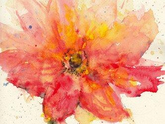 Flower 13 (額縁付き)の画像