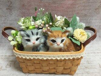 猫ちゃんと小花の持ち手付きバスケットアレンジ Mの画像