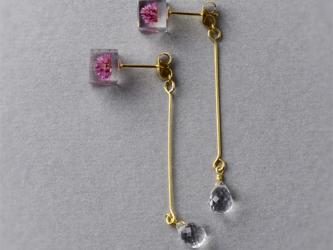 宝石質AAAクォーツとヒメツルソバのピアス(天然石, レジン, ステンレス, 送料無料)の画像