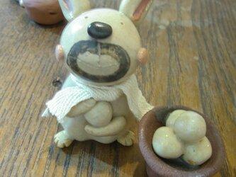 ウサギ権太のお月見準備 うさぎ 兎 お月見 月見 団子 だんご ダンゴ の画像