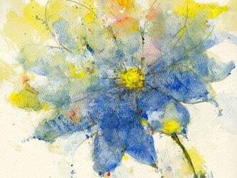 Flower 14 (額縁付き)の画像