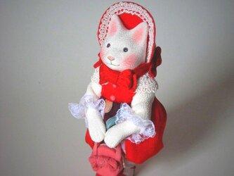 縮緬福猫 りぼんの画像