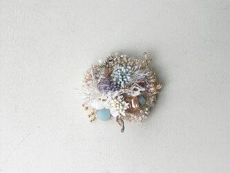 珊瑚礁のブローチの画像