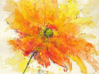 Flower 15 (額縁付き)の画像
