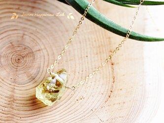 14KGF/ イエローアパタイトの原石ネックレスの画像