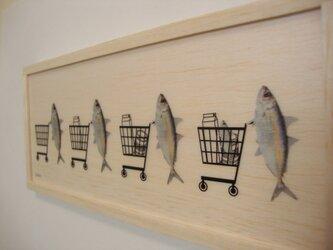 shopping fish 2の画像