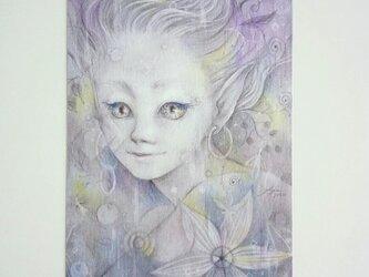 ポストカード2枚セット〖 fairy 〗の画像