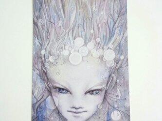 ポストカード2枚セット〖 精霊 〗の画像