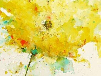 Flower 19 (額縁付き)の画像