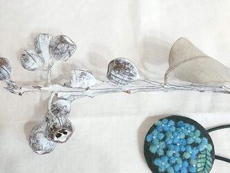ボタニカルゴム(青の紫陽花)の画像
