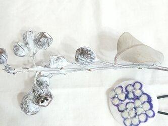 ボタニカルゴム(紫陽花ひとひら)の画像