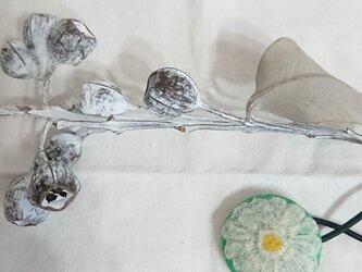 ボタニカルゴム(透き通った花)の画像