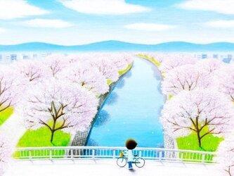 ポストカード「春風」の画像
