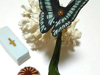 蝶のかんざし(小)アオスジアゲハの画像