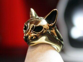 金色猫マスクリングの画像
