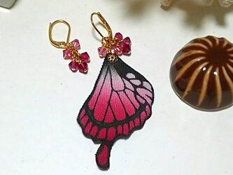 蝶の羽のピアス (アゲハ)の画像
