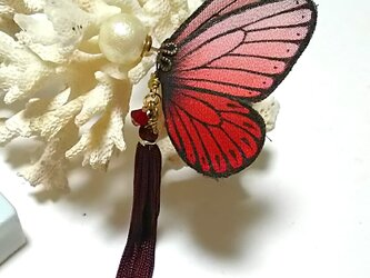 蝶のピアス(大)モンシロ系の画像