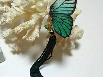 蝶のピアス(小)モルフォの画像